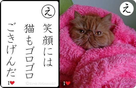 2連エポ笑顔には猫もゴロゴロご機嫌だ-side.jpg