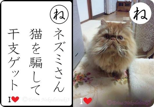 2連結Ⓒネズミさん猫を騙して干支ゲット-side.jpg
