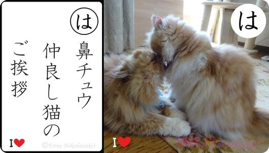 2連結Ⓒ鼻チュウ仲良し猫のご挨拶&ルネとモコ.jpg