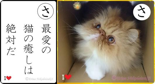 2連結猫川柳かるたルネ最愛の猫の癒しは絶対だ-side.jpg