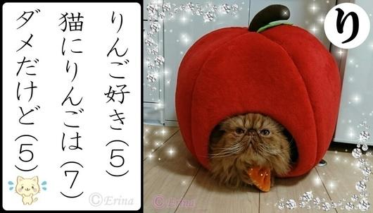 り行エポりんご好き猫にりんごはダメだけど.jpg