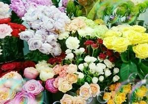幅300綺麗なお花いっぱい.JPG