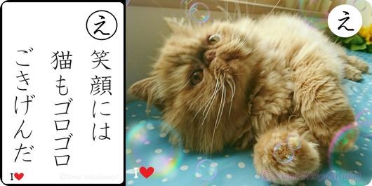 2連笑顔には猫もゴロゴロご機嫌だ-side.jpg