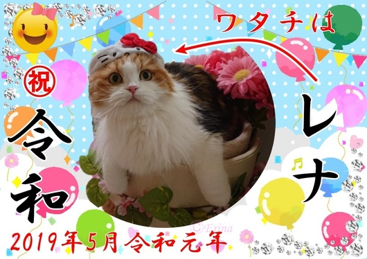 Seesaaブログ画像レナと㊗令和元年ⒸErinajpg.jpg