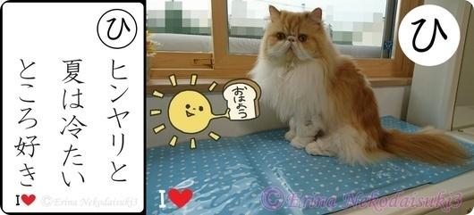 2ひ行ヒンヤリと夏は冷たいところ好き.jpg
