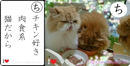 2連結Ⓒチキン好き肉食系猫だから三匹食べる-side.jpg