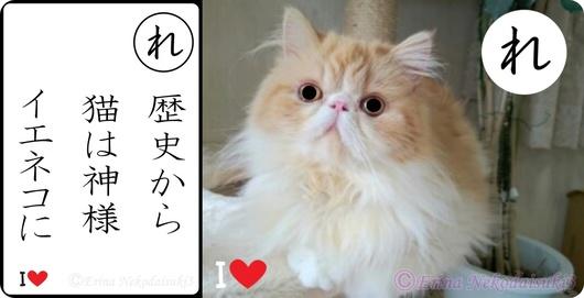 2連結Ⓒ歴史から猫は神様神秘的&モコ.jpg