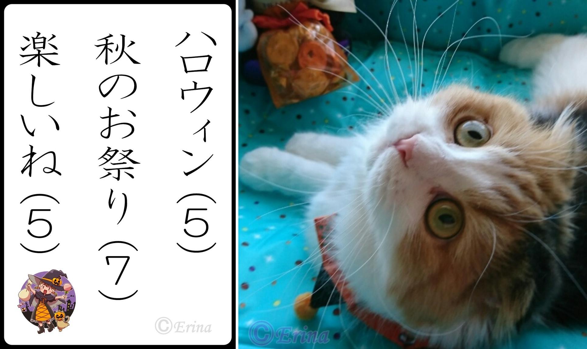 2連結Ⓒ猫川柳ハロウィン秋のお祭り楽しいね.jpg