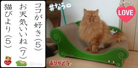 2連結エポⒸErina猫川柳ココが好きお天気いいね猫びより.jpg