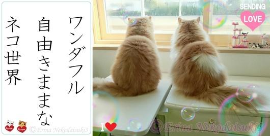2連結ルネとモコⒸワンダフル自由気ままなネコ世界jpg-side.jpg