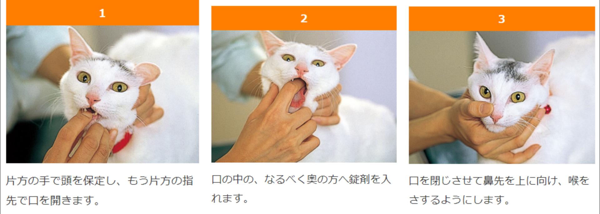 3連結水平目猫薬錠剤の飲ませ方-side.PNG