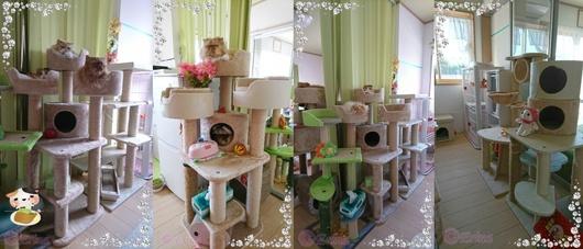 4連結ⒸErinaPEPPYの5台キャットタワーと緑キャットタワー宝石枠Seesaaブログ用.jpg