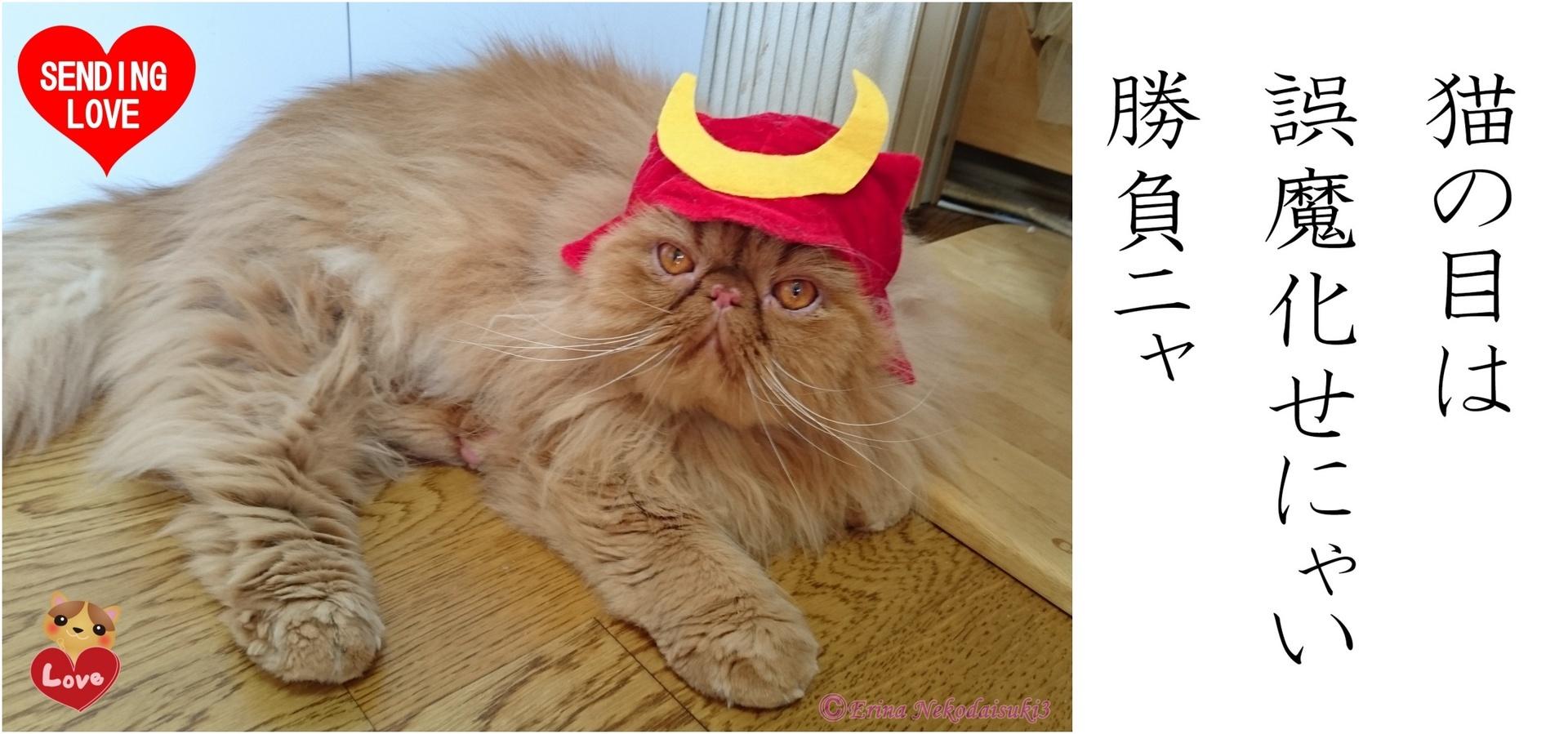 Ⓒたくましいエポちゃん赤い兜被る-side.JPG