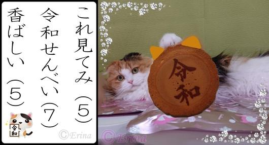 ⒸErina猫川柳「これ見てみ令和せんべい香ばしい」とレナちゃん.jpg