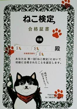 ねこ検定合格証書.JPG
