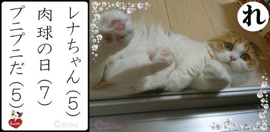 れ行レナちゃん肉球の日プニプニだ.jpg