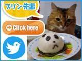 ウラジーミルさんの正方形猫川柳画像.jpg