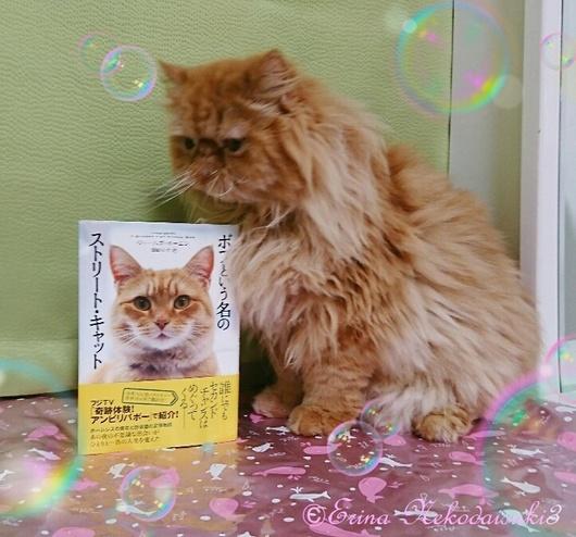 エポとボブの本Erina Nekodaisuki3.JPG