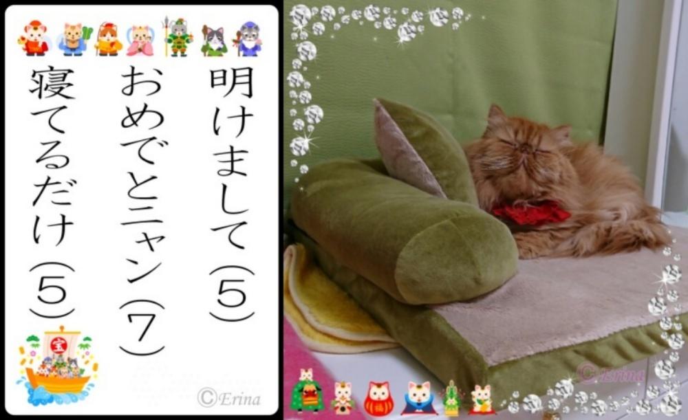 エポのみ1000ⒸErina猫川柳「明けましておめでとニャン寝てるだけ」エポ.jpg