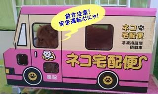 エポ横向き宅急便②.JPG