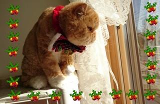 ルネちゃんクリスマス.JPG