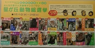 東山動物園星が丘総選挙当選発表ボード.JPG