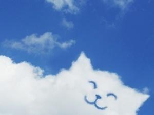 横サイズ300空とねこの雲.jpg