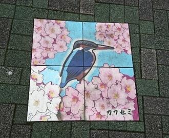歩道カワセミ.JPG