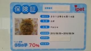 白紙エポ保険証.JPG