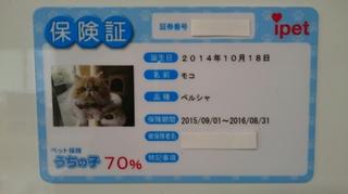 白紙モコ保険証.JPG