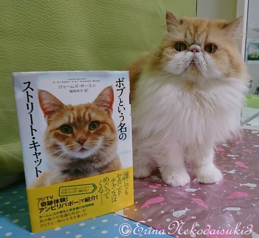 輝きモコとボブの本Erina.JPG