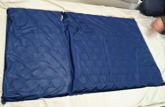 青がファインレボ1725.JPG