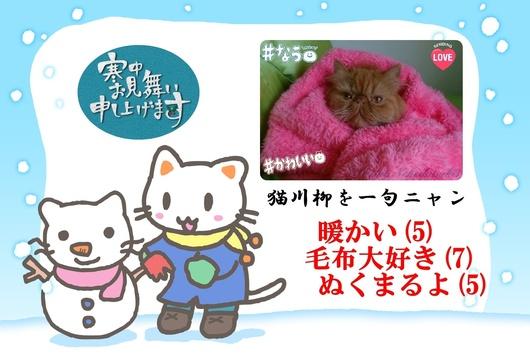 2Ⓒこっちあたたかい毛布大好きぬくまるよ&エポ.jpg